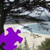 Carmel Cypress Jigsaw