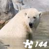 Jigsaw: Polar Bear 2