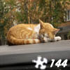 Jigsaw: Sleepy Cat