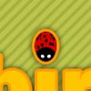 Ladybug final