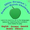 Little Newton's Number Match Challenge